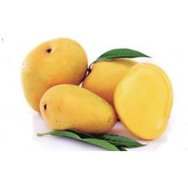 Sweet Mango