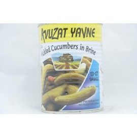 Kvuzat Yavne Pickled Cucumbers in Brine 13-17 Small 540g