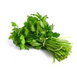 Fresh Coriander Bunch