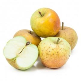 Russet Apple (lb)